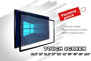 Touch screen module